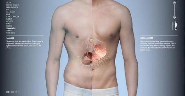 vozdeystvie-spermi-na-muzhskoy-organizm
