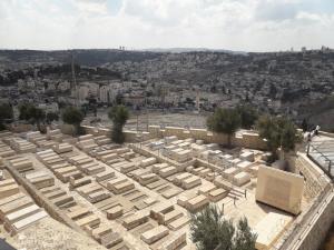 Israel eleon1